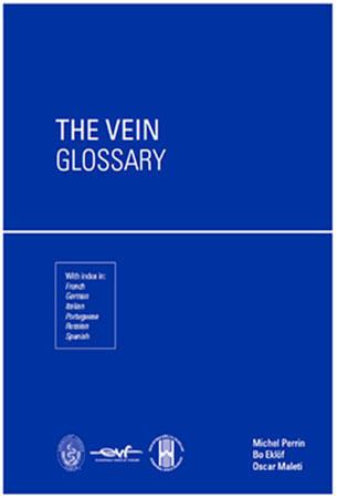 The Vein glossary 2020 version is now available