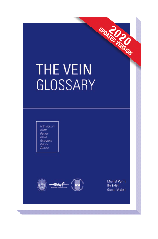 The vein glossary (updated 2020 version)